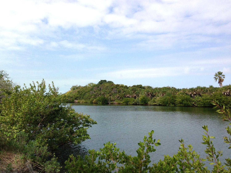 Cocohatchee River Naples Florida