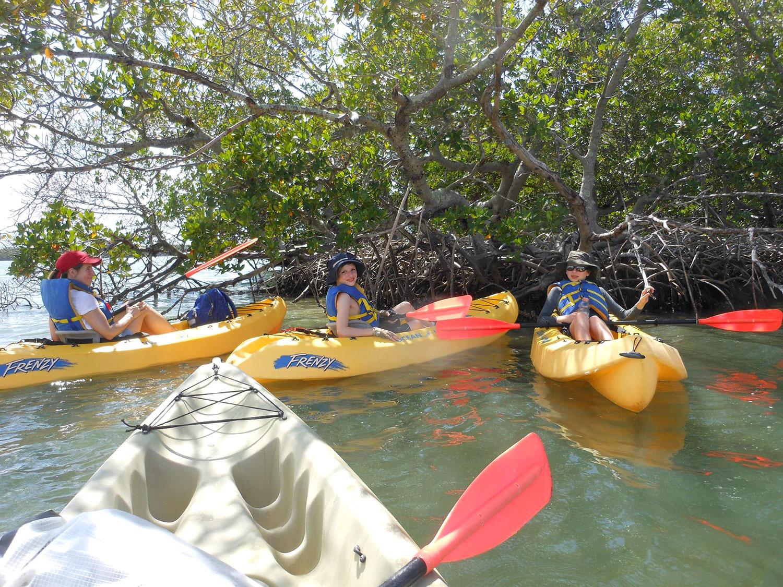 Kayaking with Kids in Naples Florida