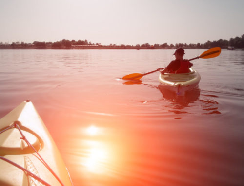 Kayaking Naples FL: Fun for the Whole Family