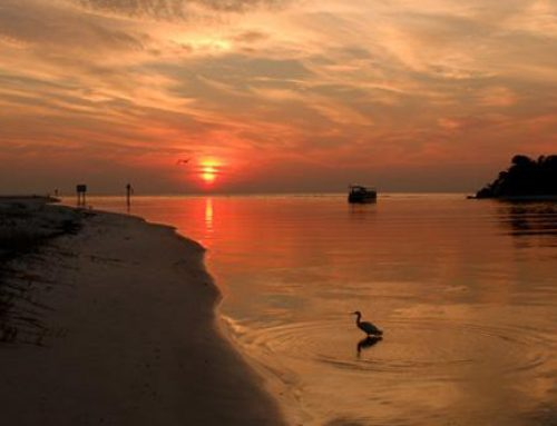 Rest And Relaxation: Sunset Watching at Delnor-Wiggins Pass State Park And Other Exciting Activities