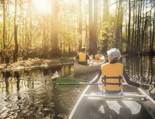 Canoeing With Kids: How To Keep Your Journey On An Even Keel