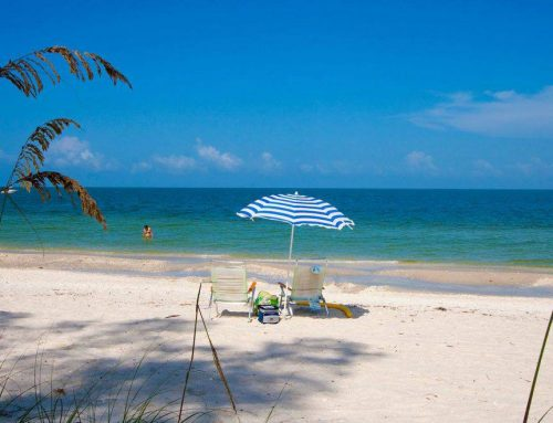 Discover the Best of Naples, Florida