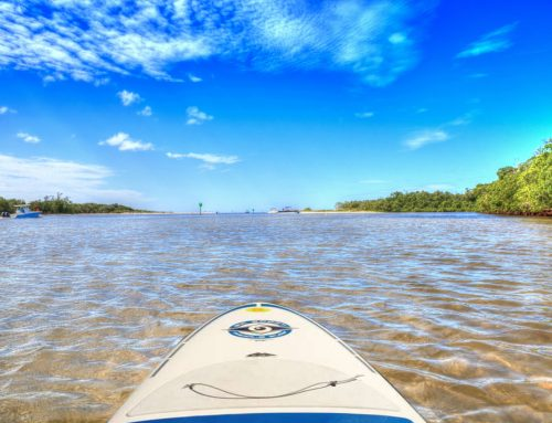 Stand-up paddleboard your way through Delnor-Wiggins Pass State Park