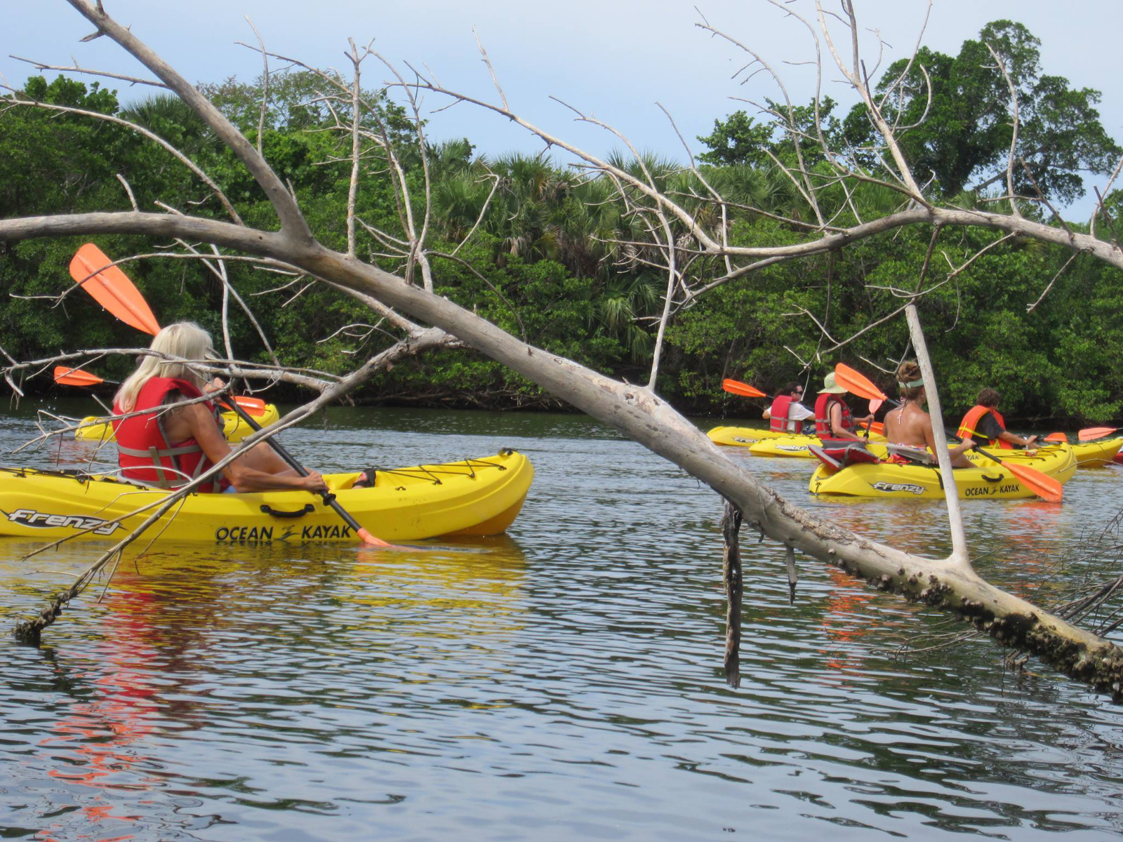 Basic Kayaking Safety Advice: Follow These 6 Guidelines For The Best Experience